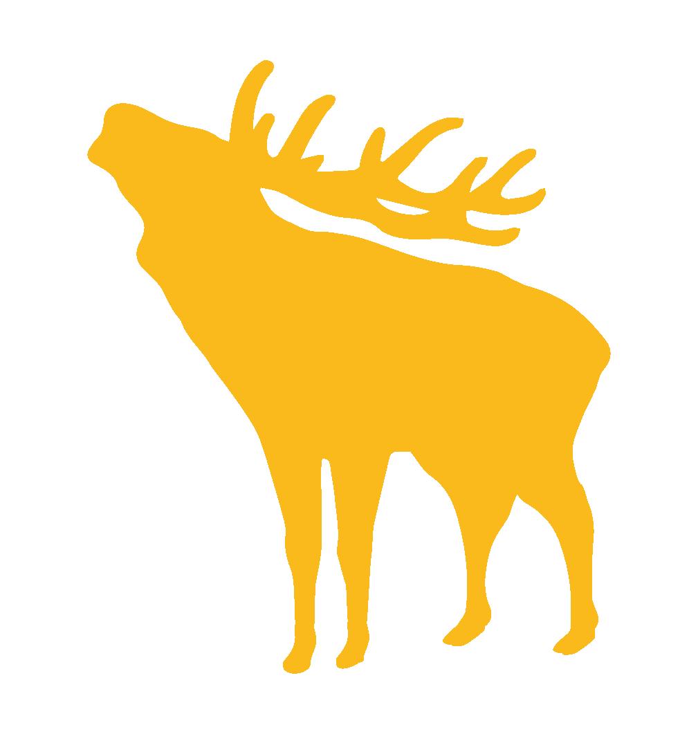 Jagdlaedeli
